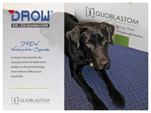 Spendenaktion_DROW